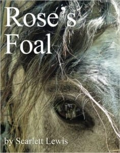 Rose's Foal by Scarlett Lewis